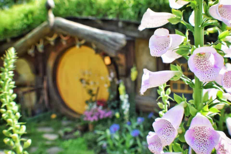 picture of the front door of a hobbit house used in the hobbiton trilogy