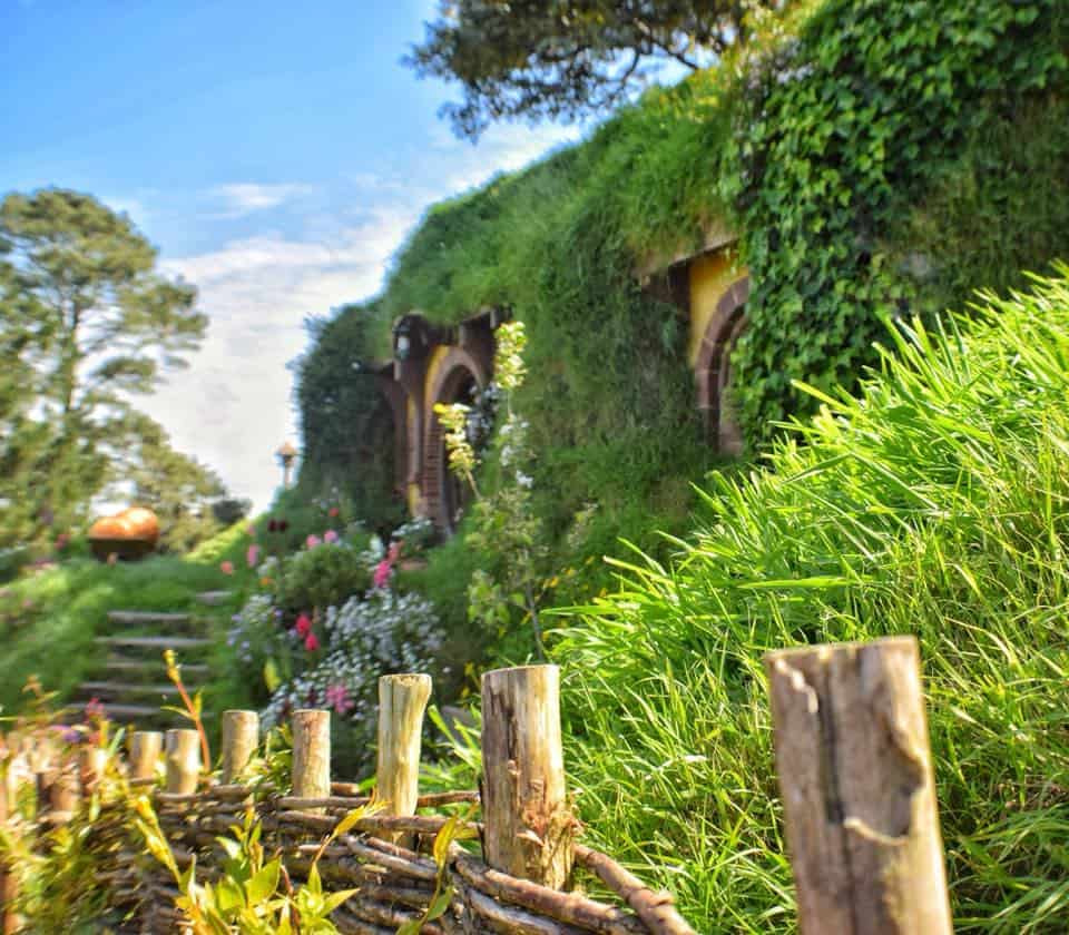a view of Bilbo's hobbit house in the Hobbiton movie